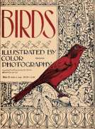 Birds, Illustrated by Color Photography, Vol. 1, No. 3 March 1897