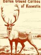 The Barren Ground Caribou of Keewatin
