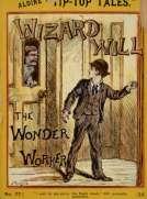 Wizard Will The Wonder Worker