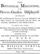 The Botanical Magazine,  Vol. 13