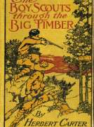The Boy Scouts Through the Big Timber Or, The Search for the Lost Tenderfoot