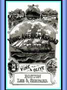 Vine and Olive; Or, Young America in Spain and Portugal