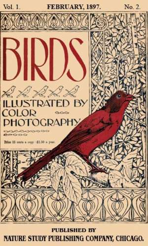 Birds, Illustrated by Color Photography, Vol. 1, No. 2