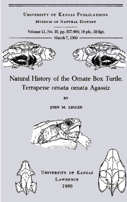 Natural History of the Ornate Box Turtle, Terrapene ornata ornata Agassiz