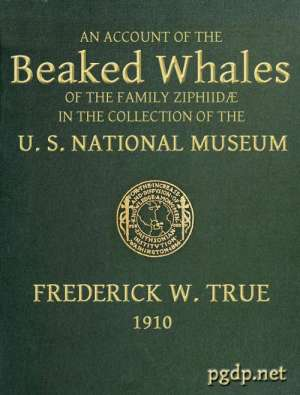 The Beaked Whales of the Family Ziphidae An account of the Beaked Whales of the Family Ziphiidae in the collection of the united states museum...
