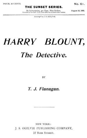Harry Blount, the Detective The Martin Mystery Solved