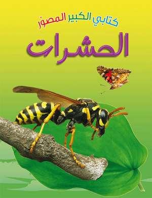 كتابي الكبير الصوّر: الحشرات