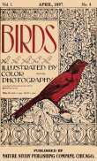 Birds, Illustrated by Color Photography, Vol. 1, No. 4